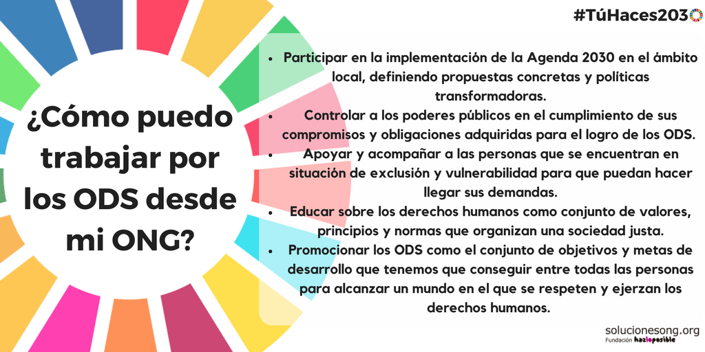 ods ongs agenda 2030 desarrollo sostenible